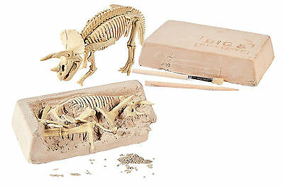 Dinosaur Excavation Kit (Triceratops) - Educational Toy Dig Site Science - New