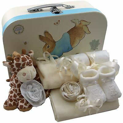 Baby gift basket packed Peter Rabbit case unisex baby shower nappy cake unique