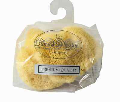 Hydrea London Premium Quality Fina Silk Sponge Cosmetic Baby Use Size 3