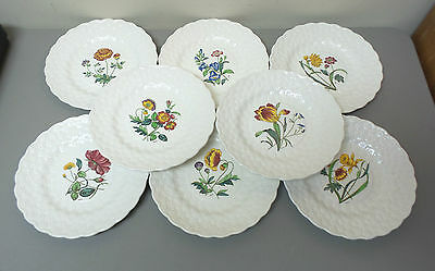 """Beautiful Set/8 Copeland Spode China Assorted Floral 9"""" Luncheon Plates"""