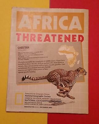 """Rare Vintage """"1990 National Geographic Magazine - Africa - Poster Size Map"""""""