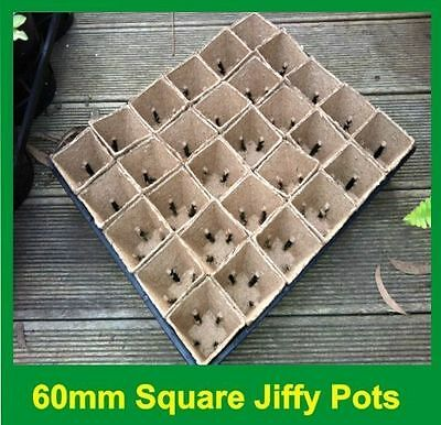 Jiffy Plant Pot With Slits Square 60mm / Tray - Great for Propagation & Seedling