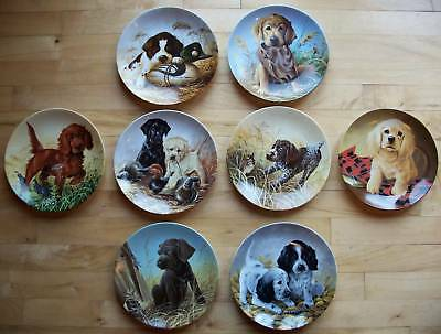 Complete Plate Set of 8  FIELD PUPPIES  Lynn Kaatz DOGS Lab Retriever Spaniel ++