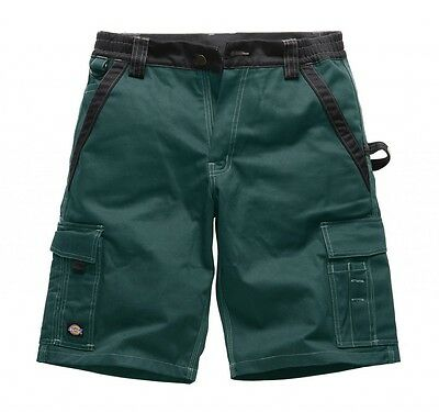 DICKIES - Industry 300 Bermuda Shorts - NEU