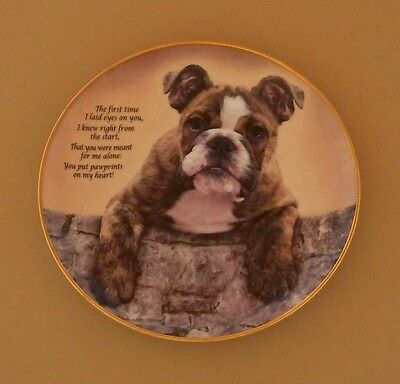 Cherished Bulldogs PAWPRINTS ON MY HEART Plate Dog Puppy Danbury Mint Bulldog