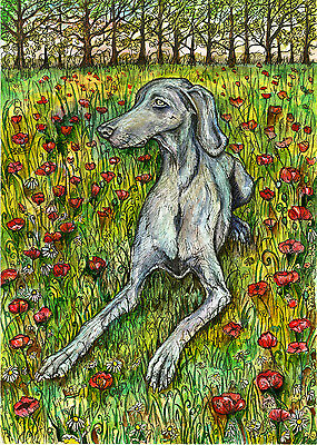 And patiently she waits-  Weimaraner Art Dog Print