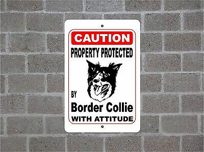 Property protected by Border Collie dog breed with attitude metal sign #B