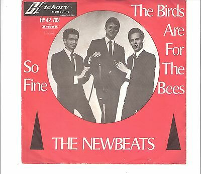NEWBEATS - The birds are for the bees