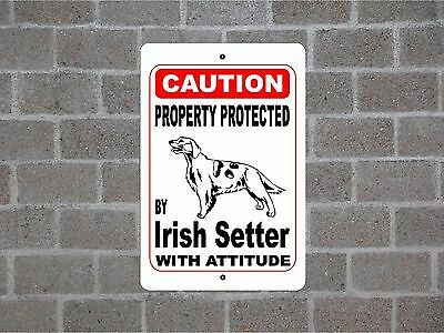 Property protected by Irish Setter dog breed with attitude metal sign