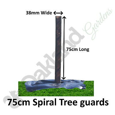 25 X ( 75CM X 38MM ) Brown Spiral Tree Guards Shelters Protectors Rabbit Hedge