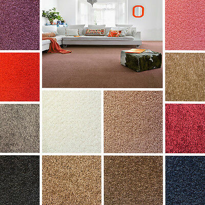 Quality Twist Pile Carpet - Felt Backed, NEW - CHEAP - 4M Width