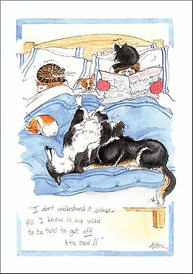 Alison's Animals Cat/Dog Theme Blank Greeting Card Bedwarmers