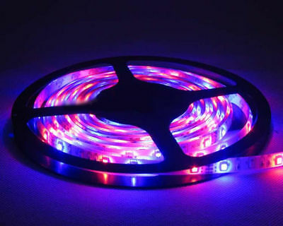 6 Color 1-4 M SMD 3528/5050/5630 Flexible Led Strip Light Car/Home From Canada