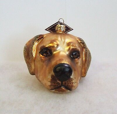 Slavic Treasures Ornament 2008 Yellow Lab Head Hand Blown Glass Poland NIB S2 20