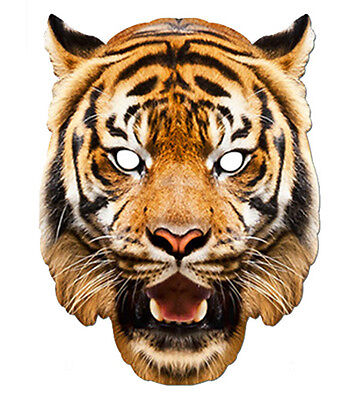Tiger Animal 2D Card Party Face Mask Fancy Dress Up Zoo Theme Exotic