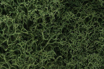 Woodland Scenics L163. Lichen - Medium Green.