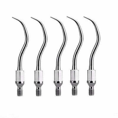 5 pcs Dental Ultrasonic Scaler Scaling Tip fit KAVO style GK1