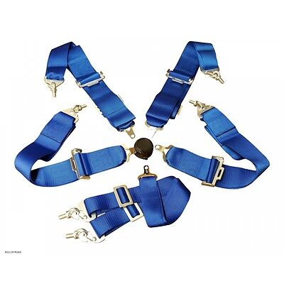 "Universale Harness Racing Cintura - 3"" Nylon 4/5/6 Punte Fissaggio - Blu"