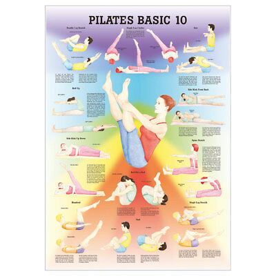 "Anatomisches Mini-Poster ""Pilates Basic 10"", LxB 34x24 cm"