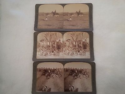 Stereo Cards,hunting Dogs, Borzoi