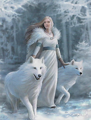 NEW Wolf Picture Winter Guardian by Anne Stokes 25 cm x 19 cm Wall Plaque