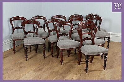 Antique Victorian Set 12 Twelve Mahogany Kitchen Dining Chairs Shoolbred c.1880