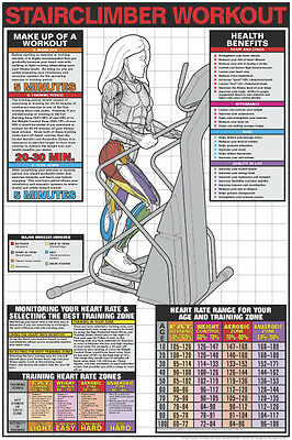 STAIR CLIMBER WORKOUT Professional Fitness Gym Wall Chart POSTER