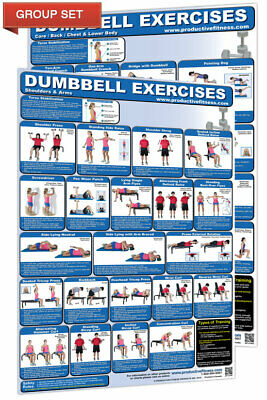 DUMBBELL EXERCISES WORKOUT Professional Fitness Gym Wall Charts 2 POSTER SET