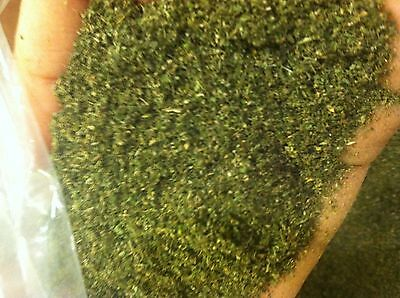 "Bulk Catnip 3 Pounds New""2016"" Crop Fresh Dried Green ***free Shipping*** Xd"
