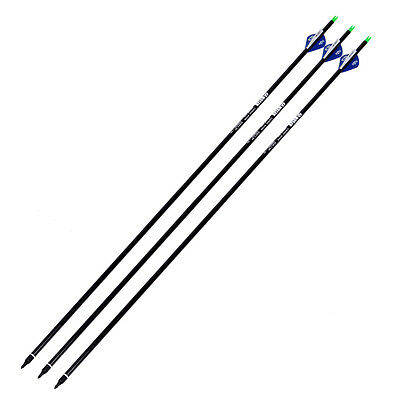 76cm Carbon Shaft Arrow Fit Compound Bow Plastic Fletching Archery Hunting 3 PCS