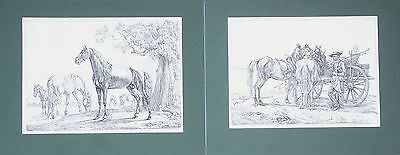 Pair of great etching by Johann Adam Klein, 19th century, Horses on the field