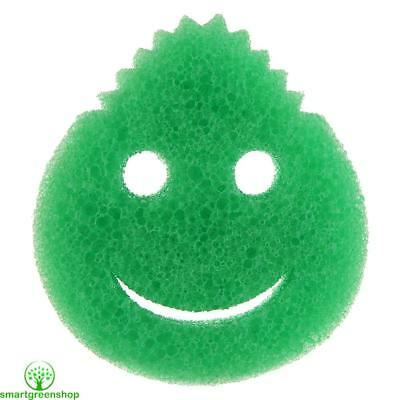 Ecoegg Eggsterminator Green / Blue (Powerful cleaning without chemicals)