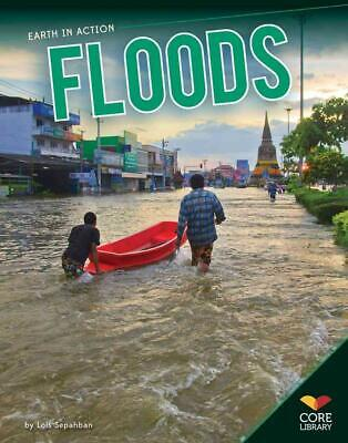 Floods by Lois Sepahban (English) Paperback Book Free Shipping!
