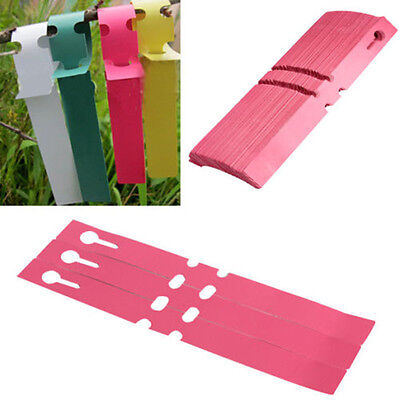 100pcs Garden Plant Pot Markers Plastic Stake Tied Tag Court Nursery Seed Labels