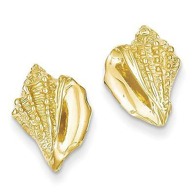 NEW 14k Yellow Gold Polished & textured Conch Shell Post Earrings 15mm x 10mm