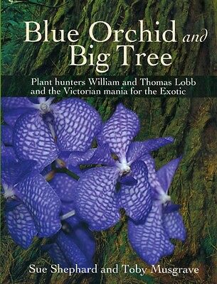 Blue Orchid and Big Tree by Sue Shephard (English)