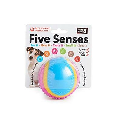 Ruff N Tumble Five Senses Toy Game Kids Play Gift Pet Supplies This Ball Appeal