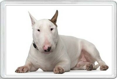 Bull Terrier - Jumbo Fridge Magnet - English Dog Pup Pups Puppies Dogs Canine