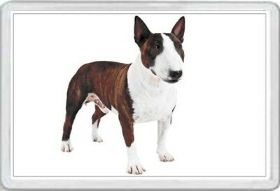 Bull Terrier - Jumbo Fridge Magnet - English Dog Pup Pups Puppies Canine     Xx