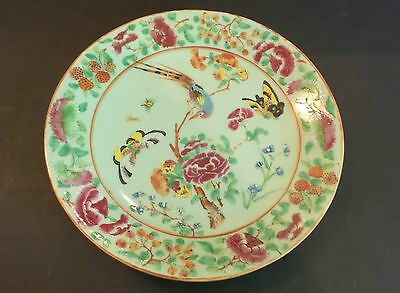 "BEAUTIFUL 19th C. ANTIQUE CHINESE EXPORT ""FAMILLE ROSE"" 10""  PLATE, c. 1840"