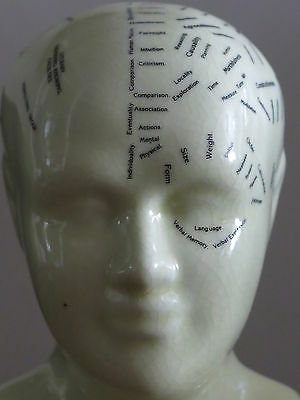 L N Fowler Phrenology Bust In Cream & Black A Medical Scientific Study Nm-Cond