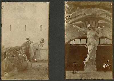 Antique Chicago? Vintage Worlds Fair Usa Nude Statue Afghan Rub Camel Old Photos