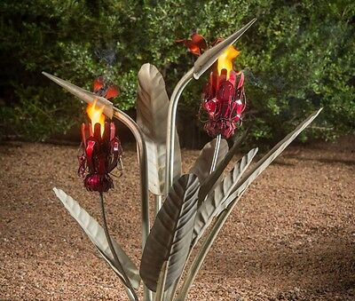 Birds of Paradise with Two Torches