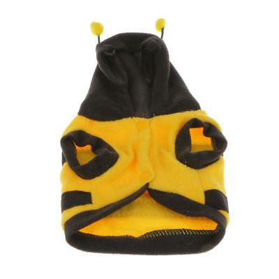 New Style Pet Dog Cat Hoodie Jacket Autumn Winter Clothes Coat Fancy Bee Costume