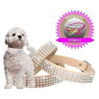 Cani Strass Collare Cani Tipo Collare Cuoio in Beige Made in Germany XXS-M F2