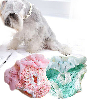 Pet Supplies Dog Puppy Sanitary Panty Pant Lace Short Panty Diaper Underwear