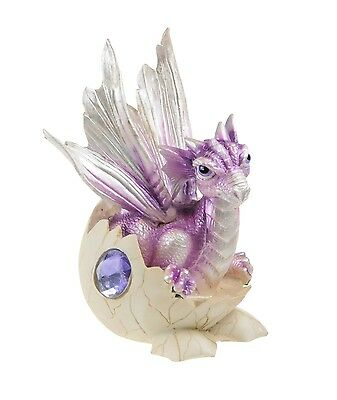 Purple Baby Dragon in Egg Resin Figurine  - ZEM