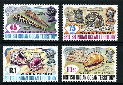 British Indian Ocean Territory  1974  Shell Stamps