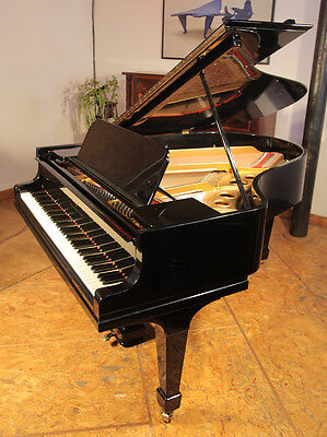 Steinway Model O grand piano. Restored. 3 year warranty