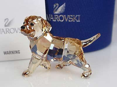 Swarovski Golden Retriever, Standing Retires 2016 Mib #1142824